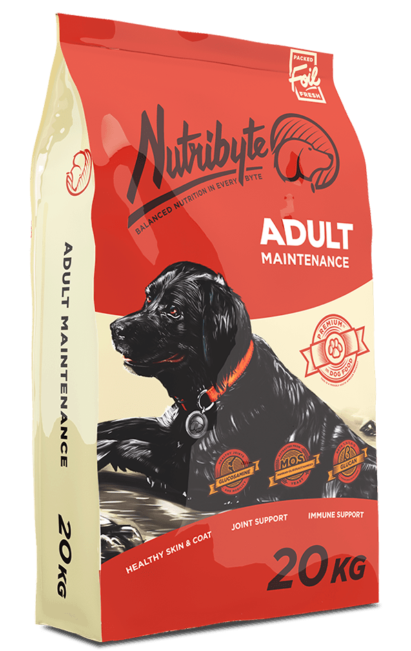 adult-maintanance