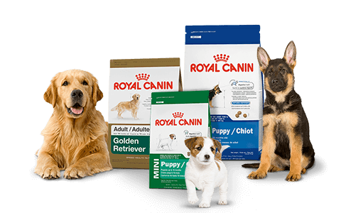 royal-canin-dog-food