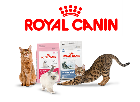 royal-canin-cat-food