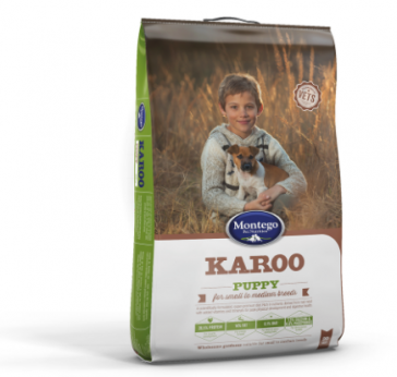 montego-karoo-small-to-medium-breed-puppy