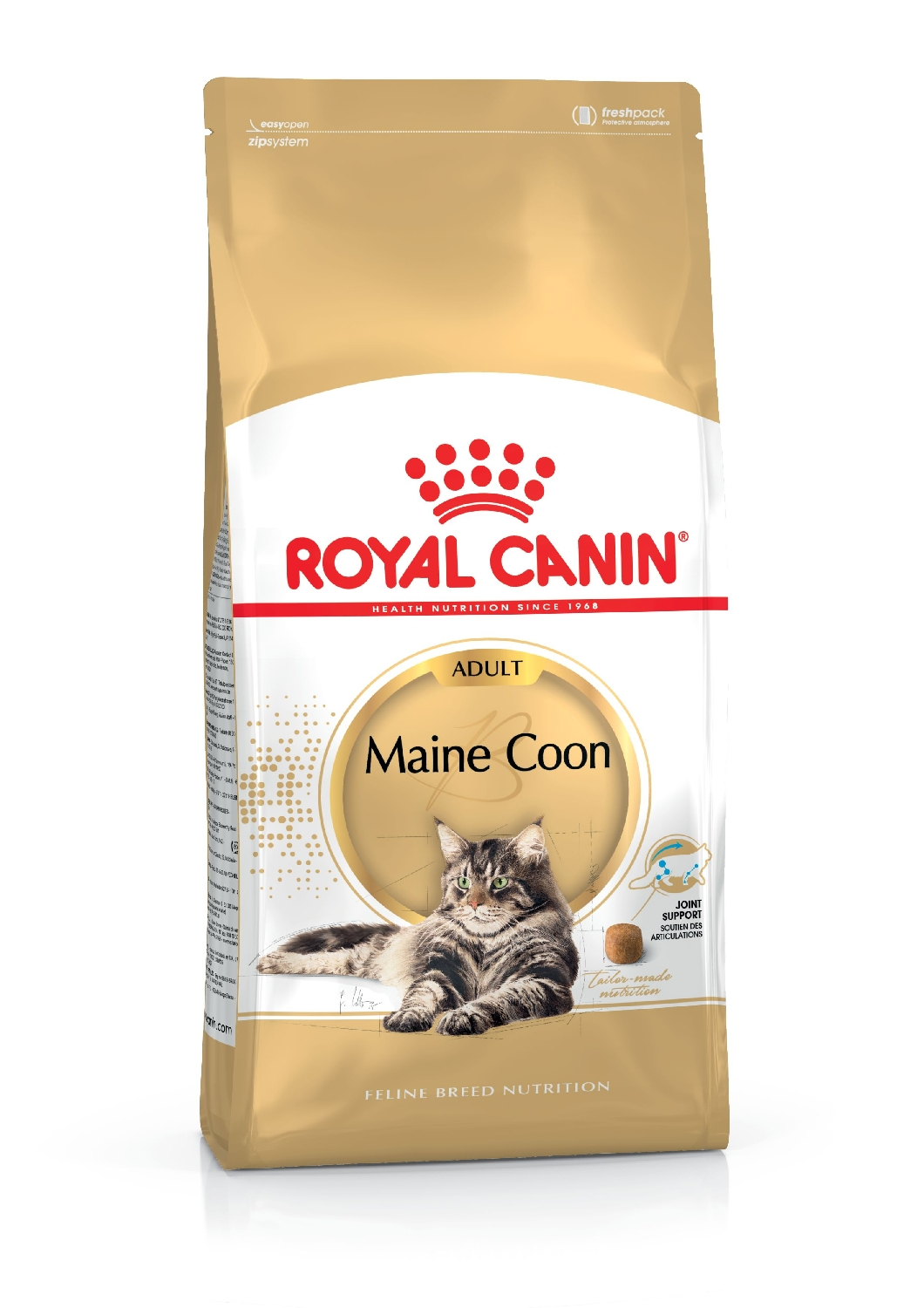 maine-coon-adult