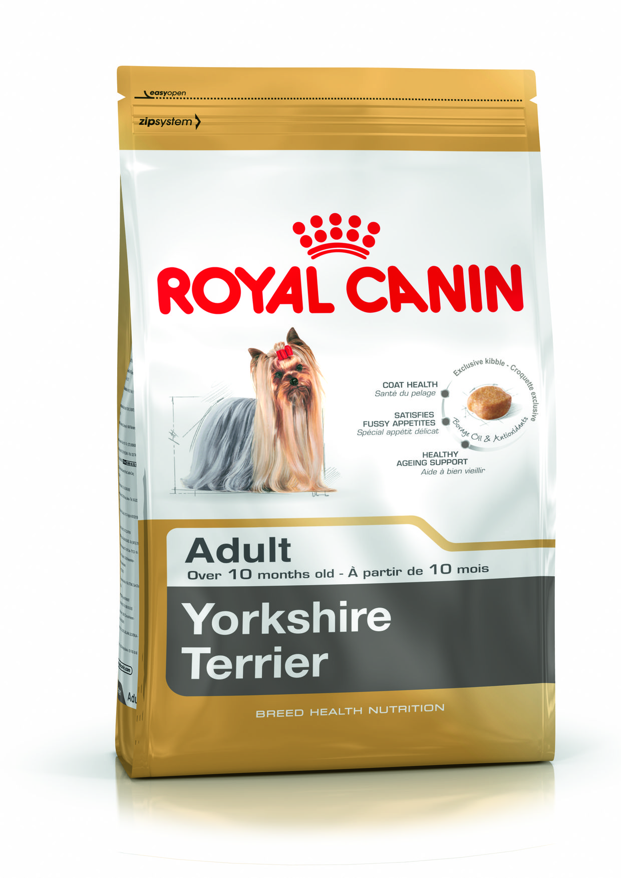 yorkshire-terrier-adult
